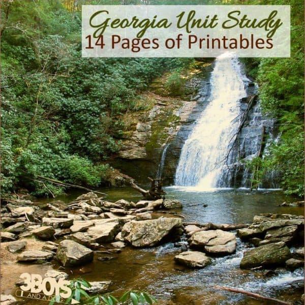 Georgia State Unit Study.sq