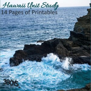Hawaii State Unit Study.sq