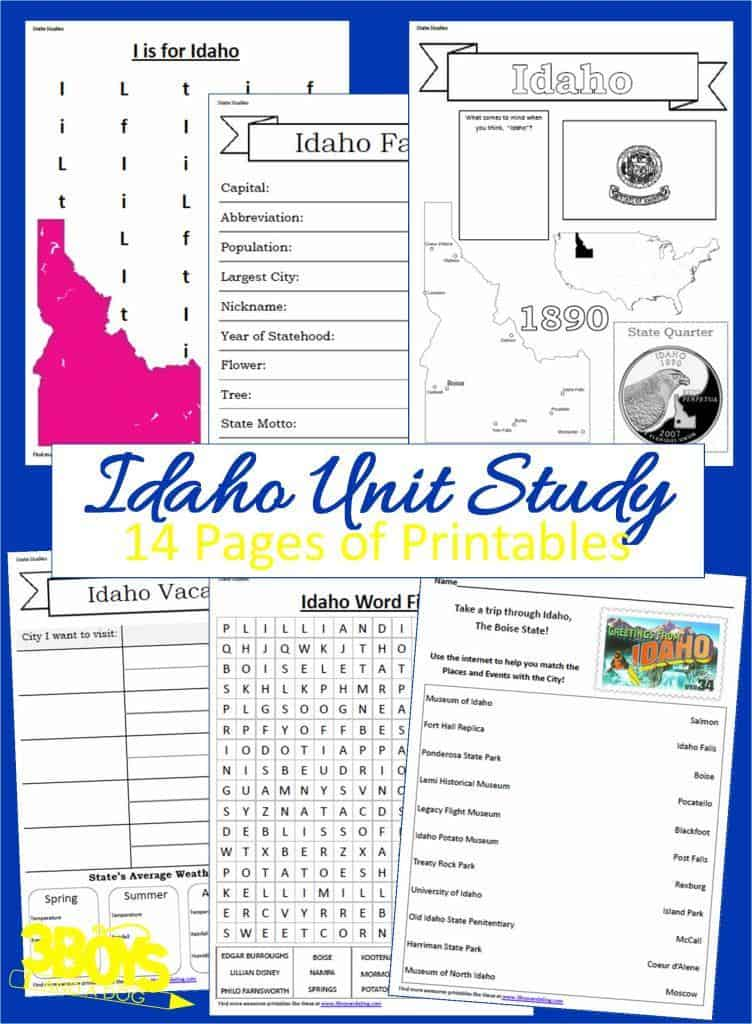 14 page downloadable workbook to help you teach your child all about the State of Idaho.