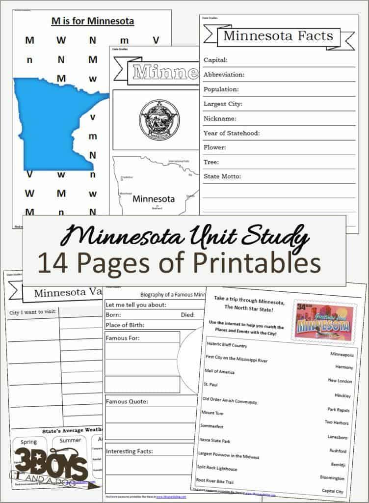 Minnesota State Unit Study