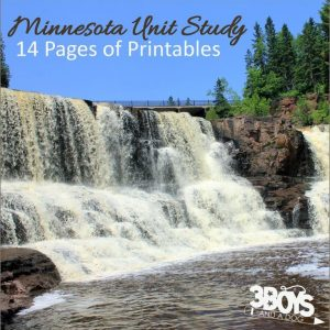 Minnesota State Unit Study.sq