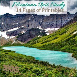 Montana State Study.sq