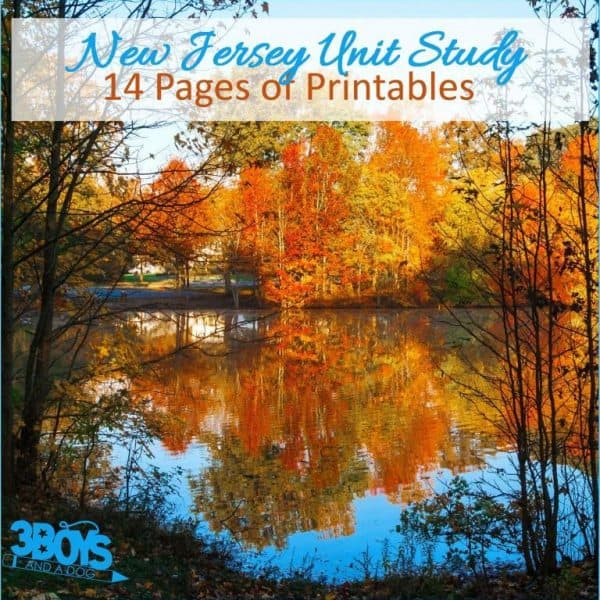 New Jersey State Unit Study.sq