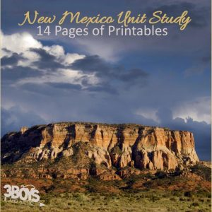 New Mexico State Unit Study.sq