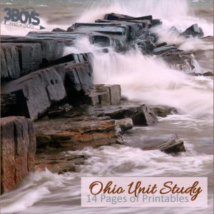 Ohio State Unit Study.sq