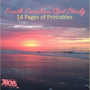 South Carolina State Unit Study.sq