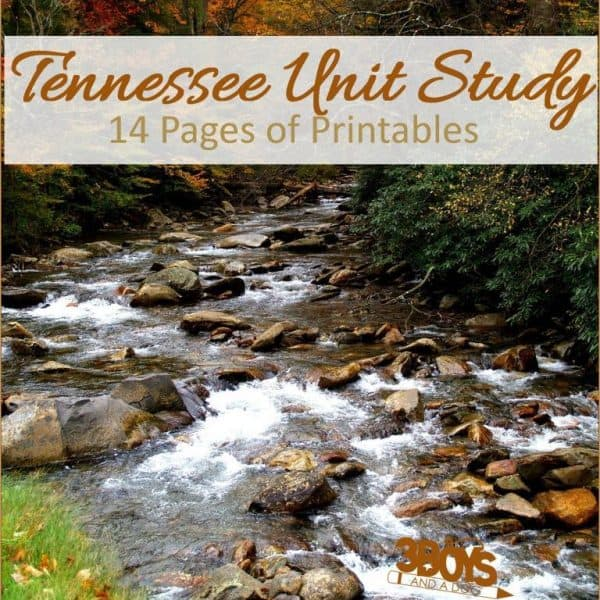 Tennessee State Unit Study.sq