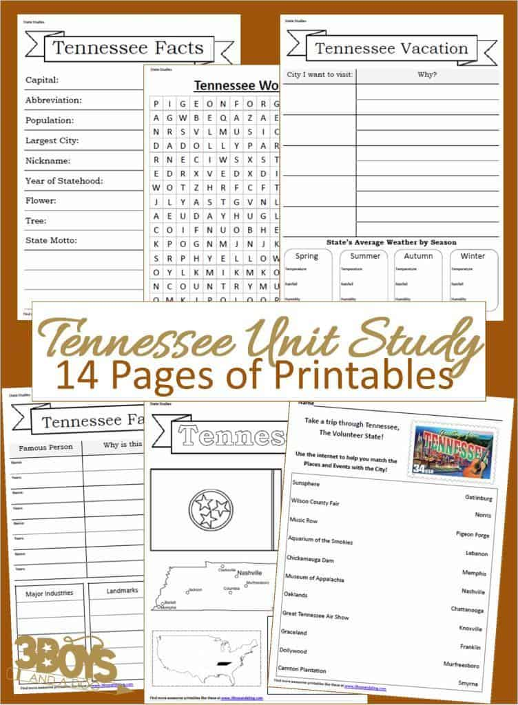 14 page downloadable workbook to help you teach your child all about the State of Tennessee.