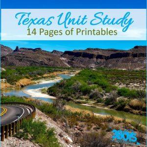 Texas State Unit Study.sq