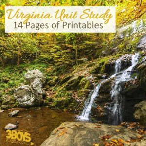 Virginia State Unit Study.sq