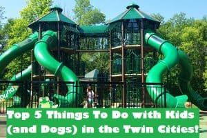 The Top Five Things To Do with Kids (and dogs!) in the Twin Cities