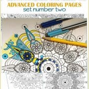 Printable Advanced Mandala Inspired Coloring Pages