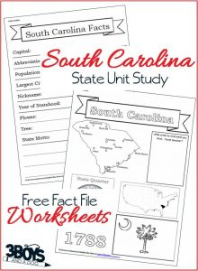 South Carolina State Fact File Worksheets