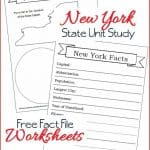 New York State Fact File Worksheets