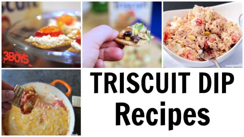 Triscuit Dip Recipes to Try