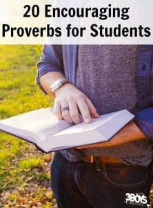20 Encouraging Proverbs for Students