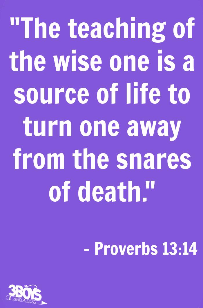 Proverbs 13 verse 14