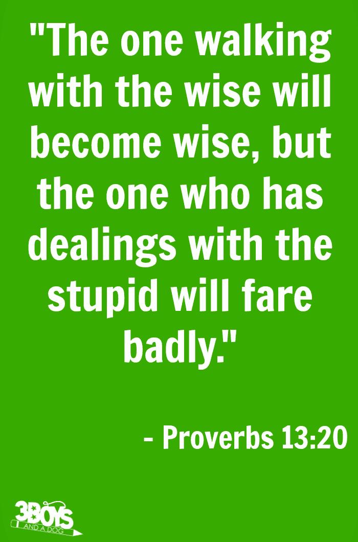 Proverbs 13 verse 20