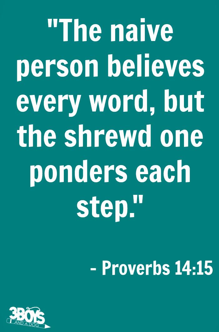 Proverbs 14 verse 15