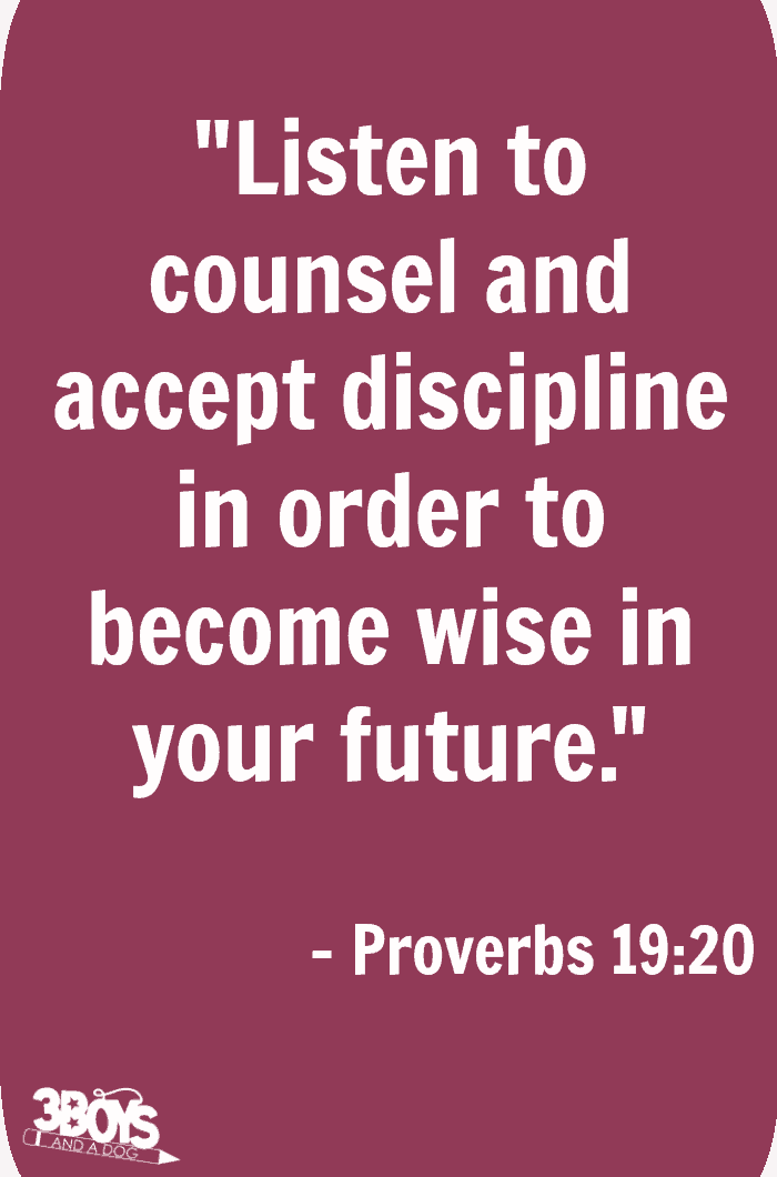 Proverbs 19 verse 20