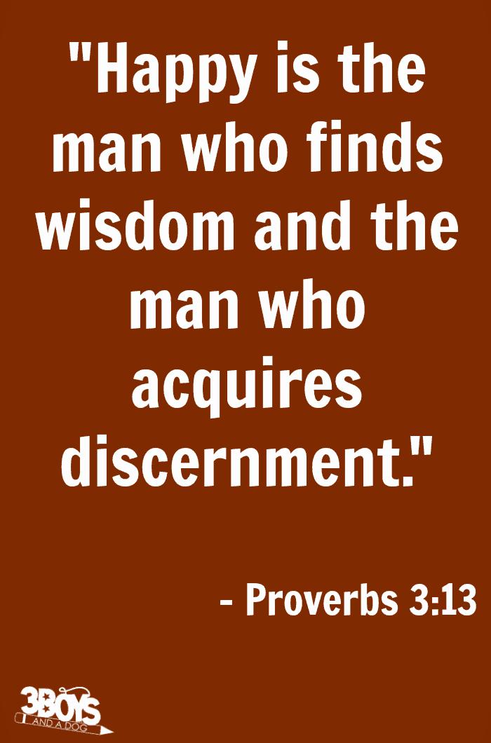 Proverbs 3 verse 13