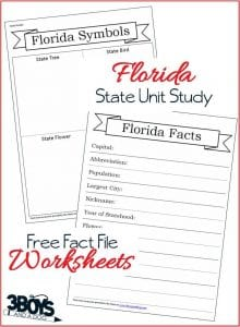 Florida State Fact File Worksheets