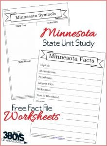 Minnesota State Fact File Worksheets