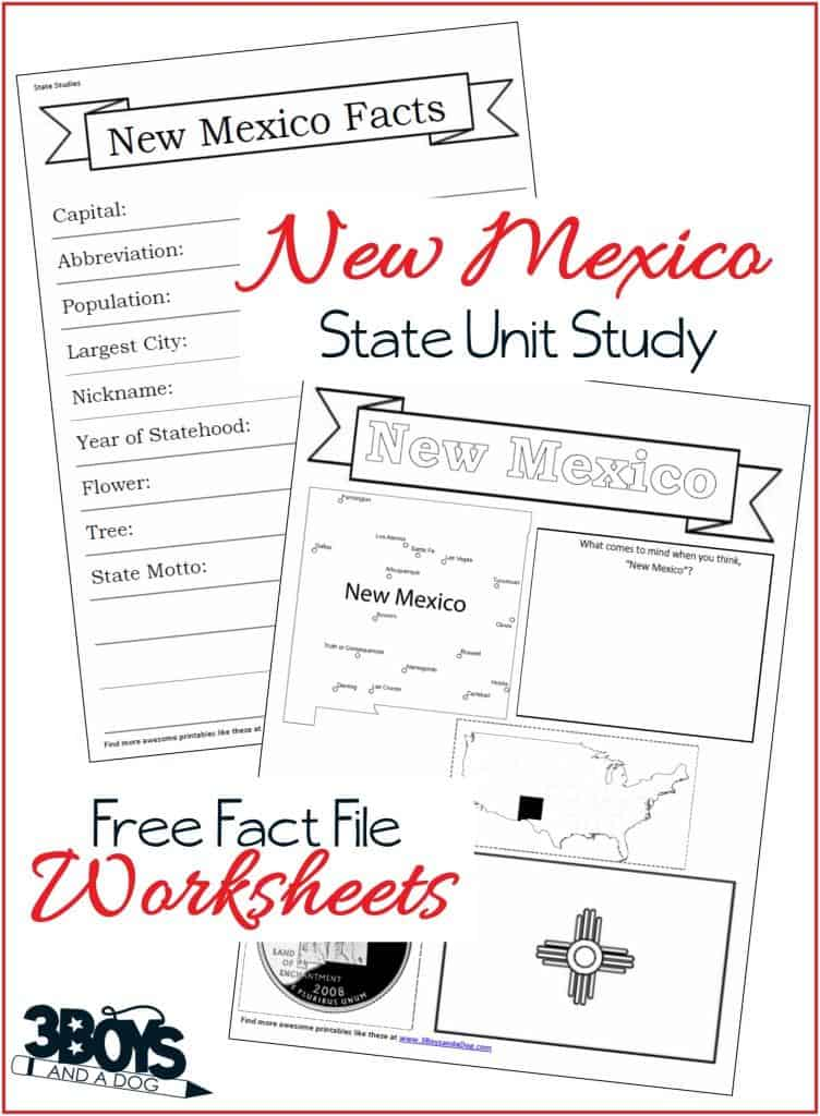 New Mexico State Fact File Worksheets