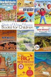 New Mexico State Books for Kids