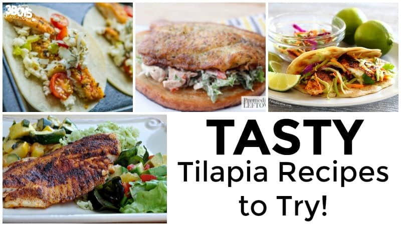 Tasty Tilapia Recipes to Try