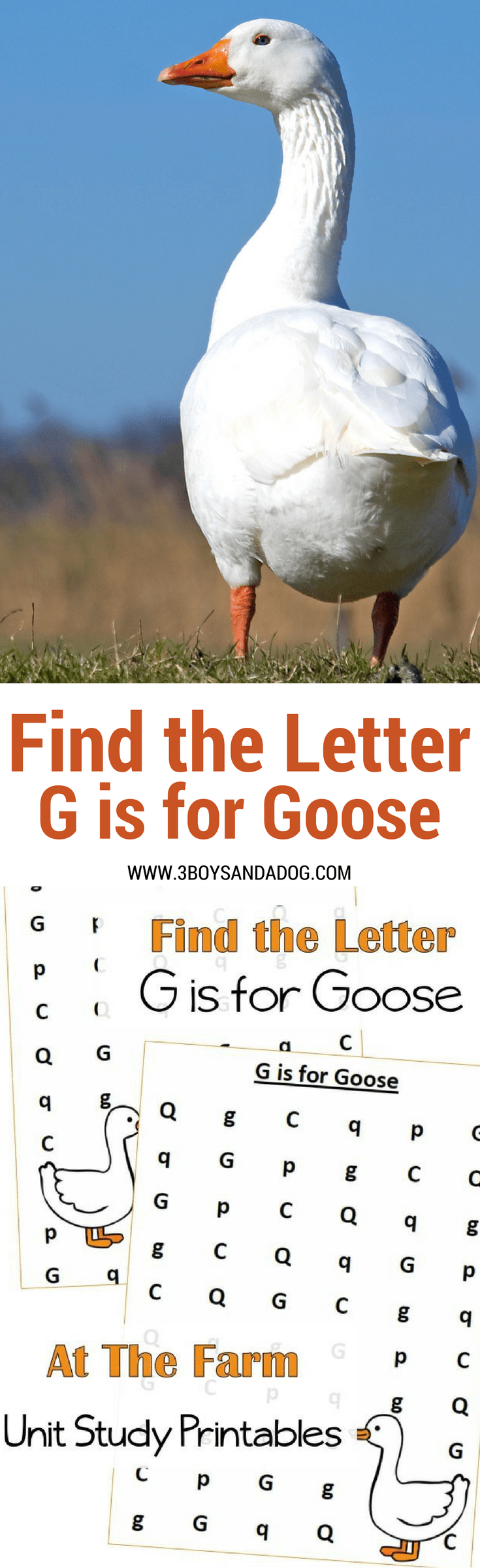 Find the letter printables g is for goose at the farm unit study these find the letter printables g is for goose will help your preschool and early altavistaventures Images