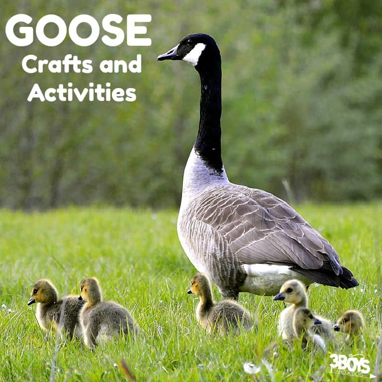 Goose Crafts and Activities for Kids