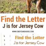 J is for Jersey Cow homeschooling freebies