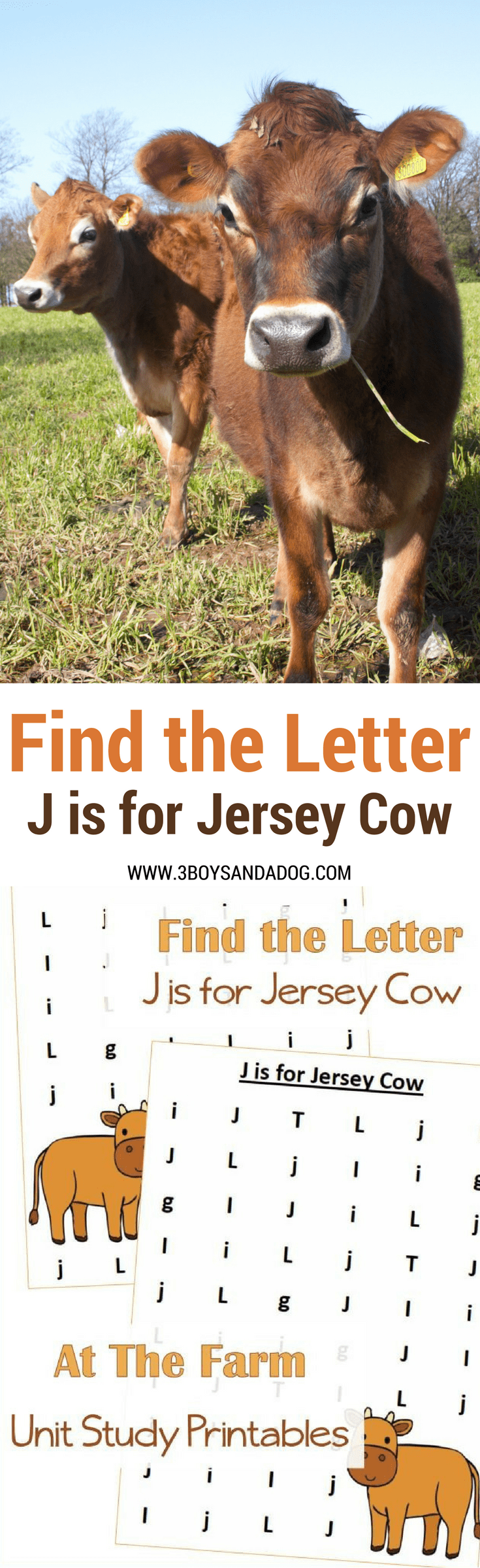J is for Jersey Cow homeschooling freebies