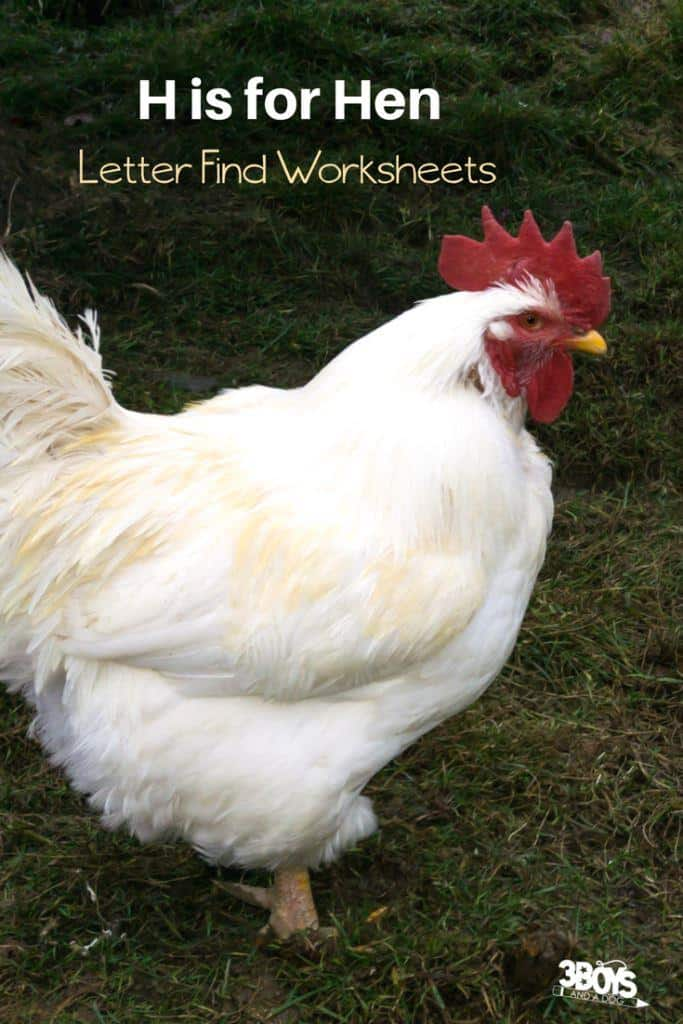 h is for hen letter find worksheets