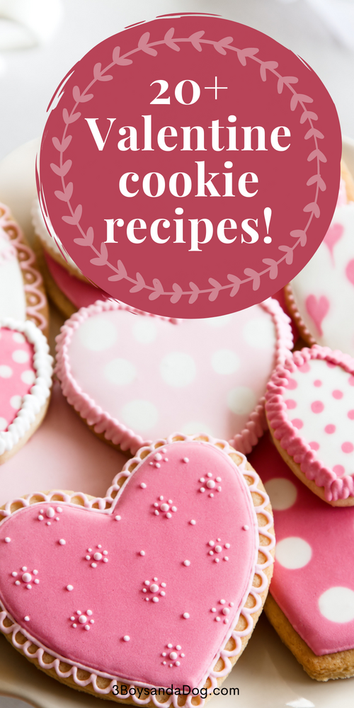 over 20 cookies for you to make this valentines day