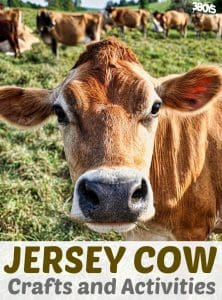 Jersey Cow Crafts and Activities