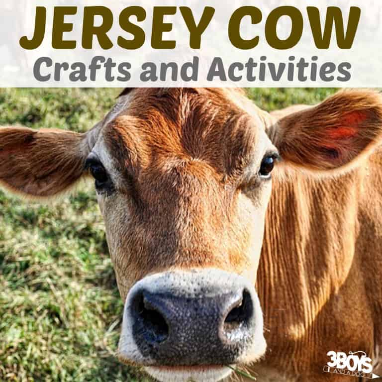 Jersey Cow Crafts and Activities for Kids to Try
