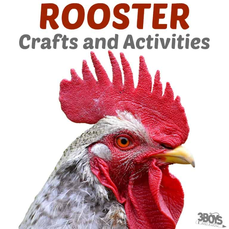 Rooster Crafts and Activities for Kids to Try