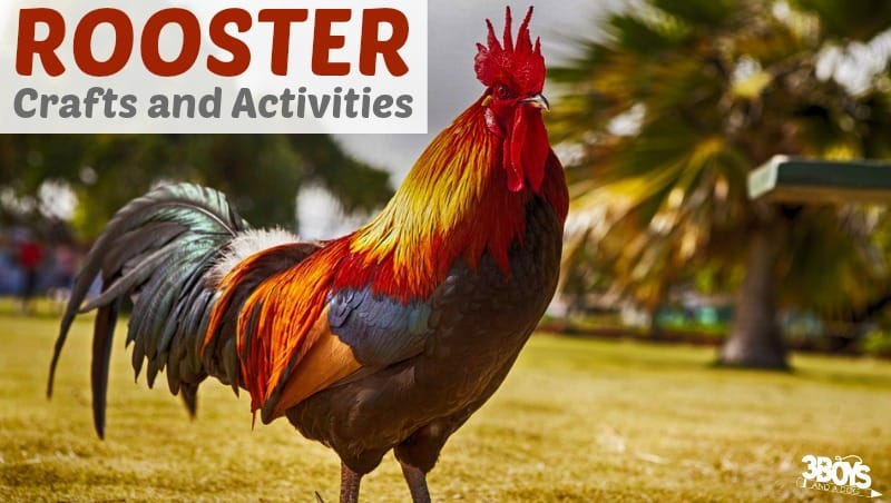Rooster Crafts and Activities for Kids