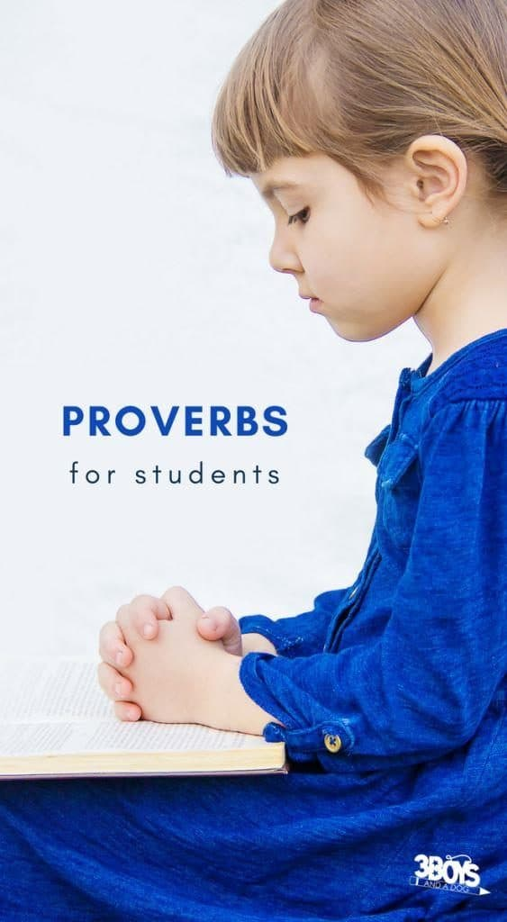proverbs for students