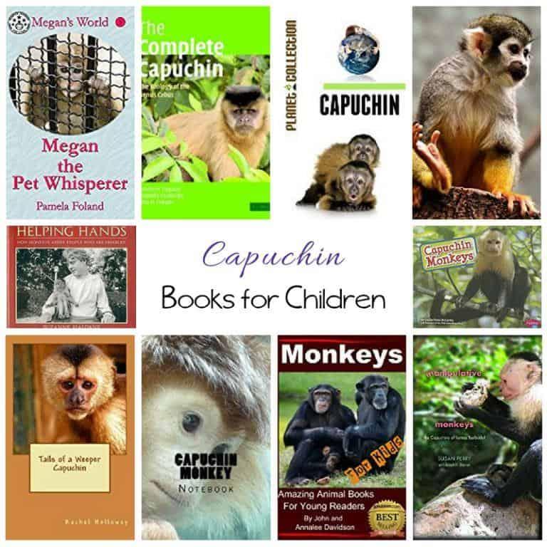 Capuchin Monkey Books for Children