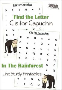 Find the Letter C is for Capuchin