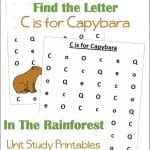 Find the Letter C is for Capybara Worksheets