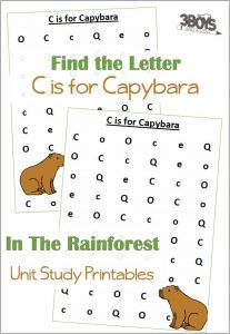 Find the Letter C is for Capybara