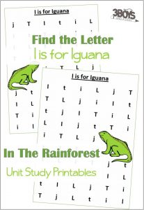 Find the Letter I is for Iguana