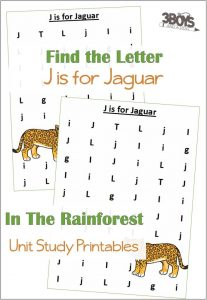 Find the Letter J is for Jaguar
