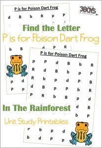 Find the Letter P is for Poison Dart Frog
