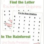 Find the Letter R is for River Dolphin Worksheets