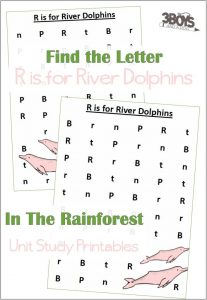 Find the Letter R is for River Dolphins